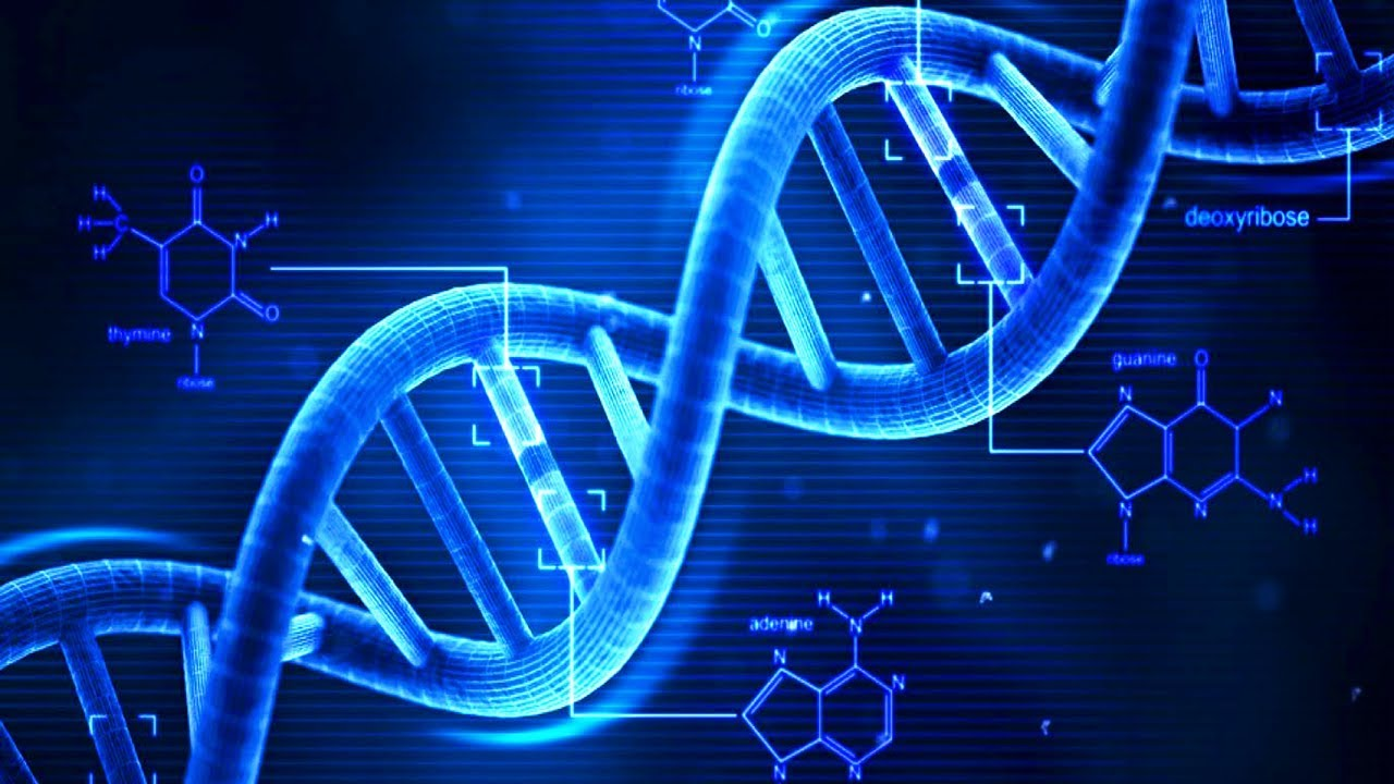 an analysis of scientific knowledge about founder mutations in genetics