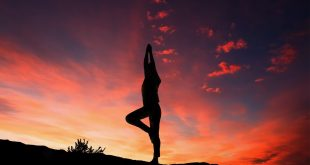 Yoga: Mild Exercise, Great Results