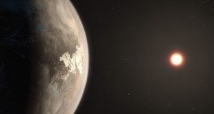 A New, Possibly Habitable, Planet