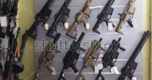 Debate on Gun Control