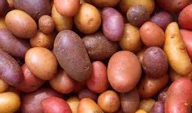 Potatoes: Super Food or Potential Danger?